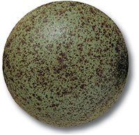 Terracolor Green Marble Speckle - 230ml