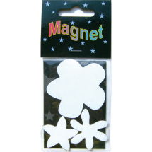 Assorted Magnetic Shapes flowers 5-4-3cm