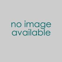 Buy studio shimpo rk5tf aspire tabletop potters wheel 100w